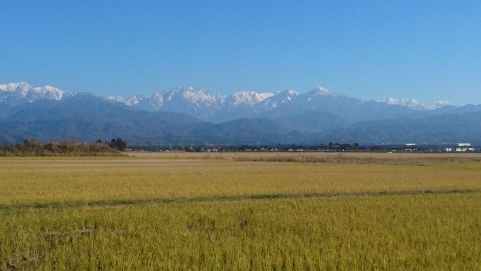 立山は白くなりました